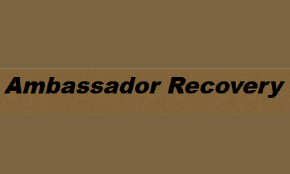 Ambassador Recovery