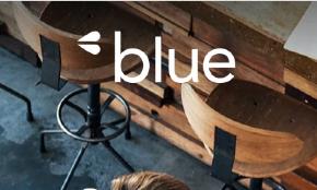 Blue & Co LLC